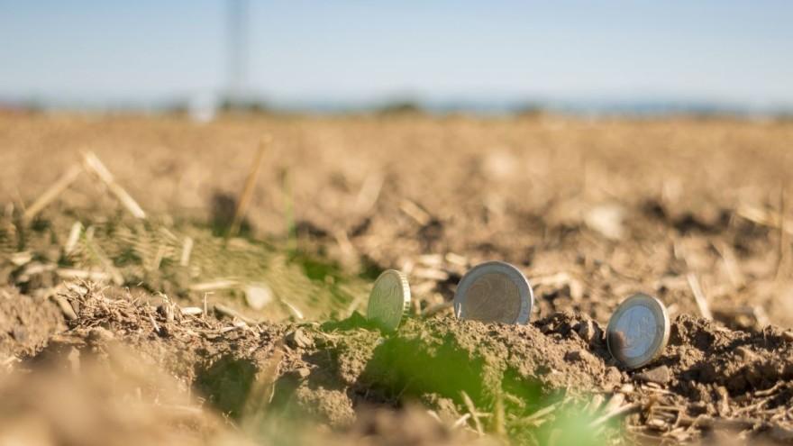 Federalno ministarstvo poljoprivrede objavilo uslove i rokove za podnošenje zahtjeva za poticaje